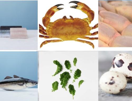 Årets kokk 2019: Råvarene
